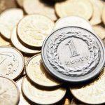 1 gr czy 1 zł - ile wynosi opłata weryfikacyjna i po co trzeba ją opłacać?