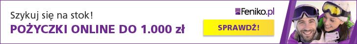 Feniko - 1000 zł na 4 miesiące