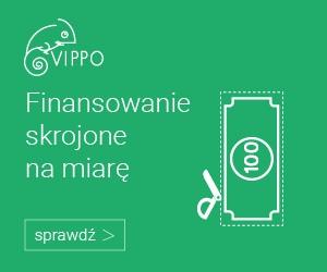 Szybka pożyczka przez internet w Vippo