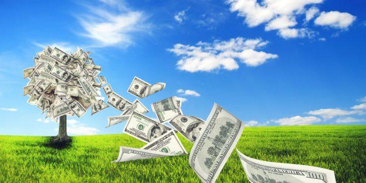 Kredyt inwestycyjny jest skierowany do działalności gospodarczych.