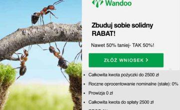 Wandoo – nawet 50 proc. rabatu w Programie Lojalnościowym!
